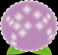 紫陽花のイラスト②
