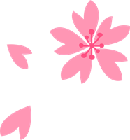 桜の花びらのイラスト③