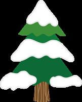 もみの木のイラスト